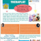 SEMINAR INTRODUCTION TO THERAPLAY
